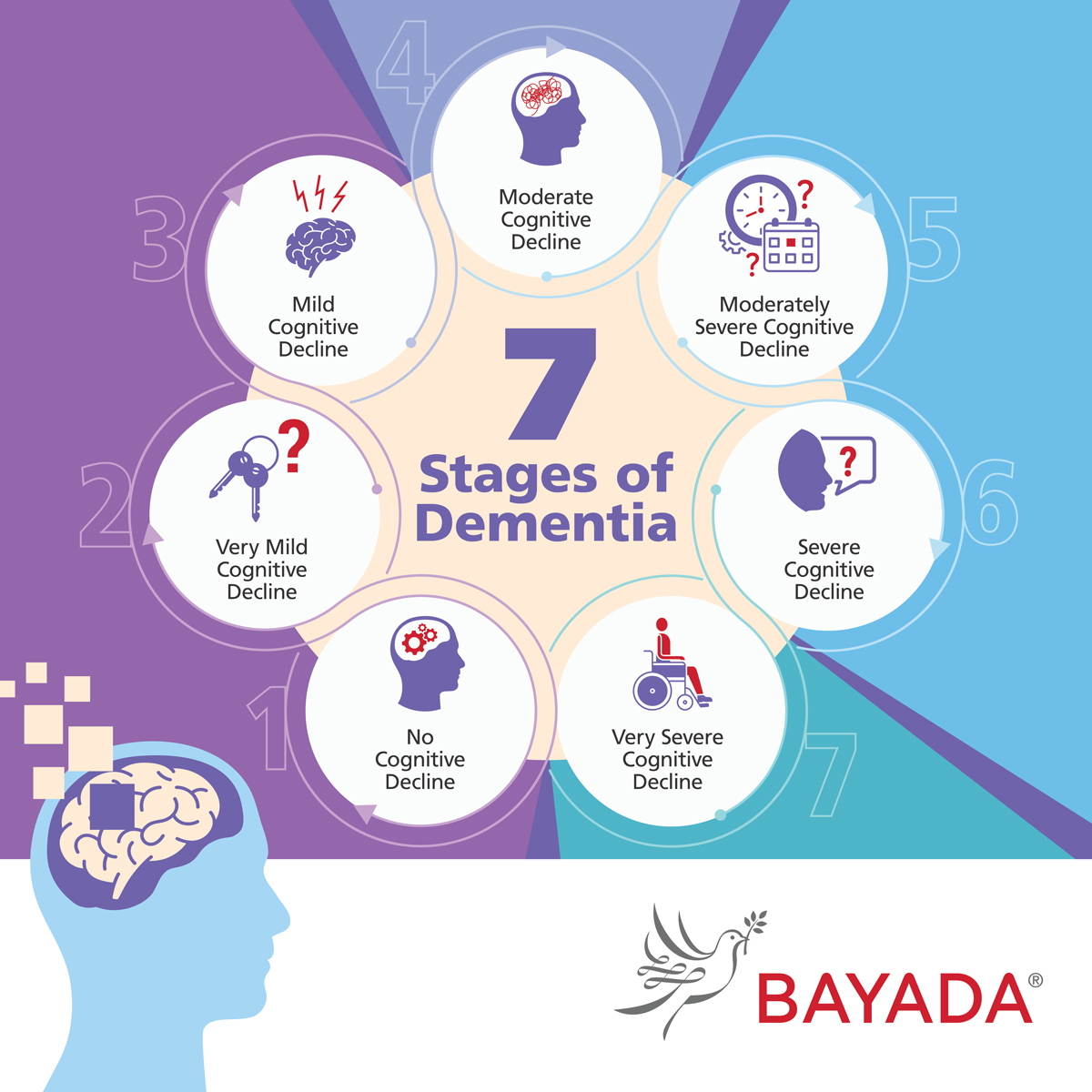 The stages of dementia