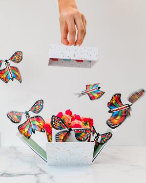 A hand removing the top of box. Inside the box are colorful paper butterflies flying out.